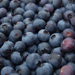 Season-Blueberries